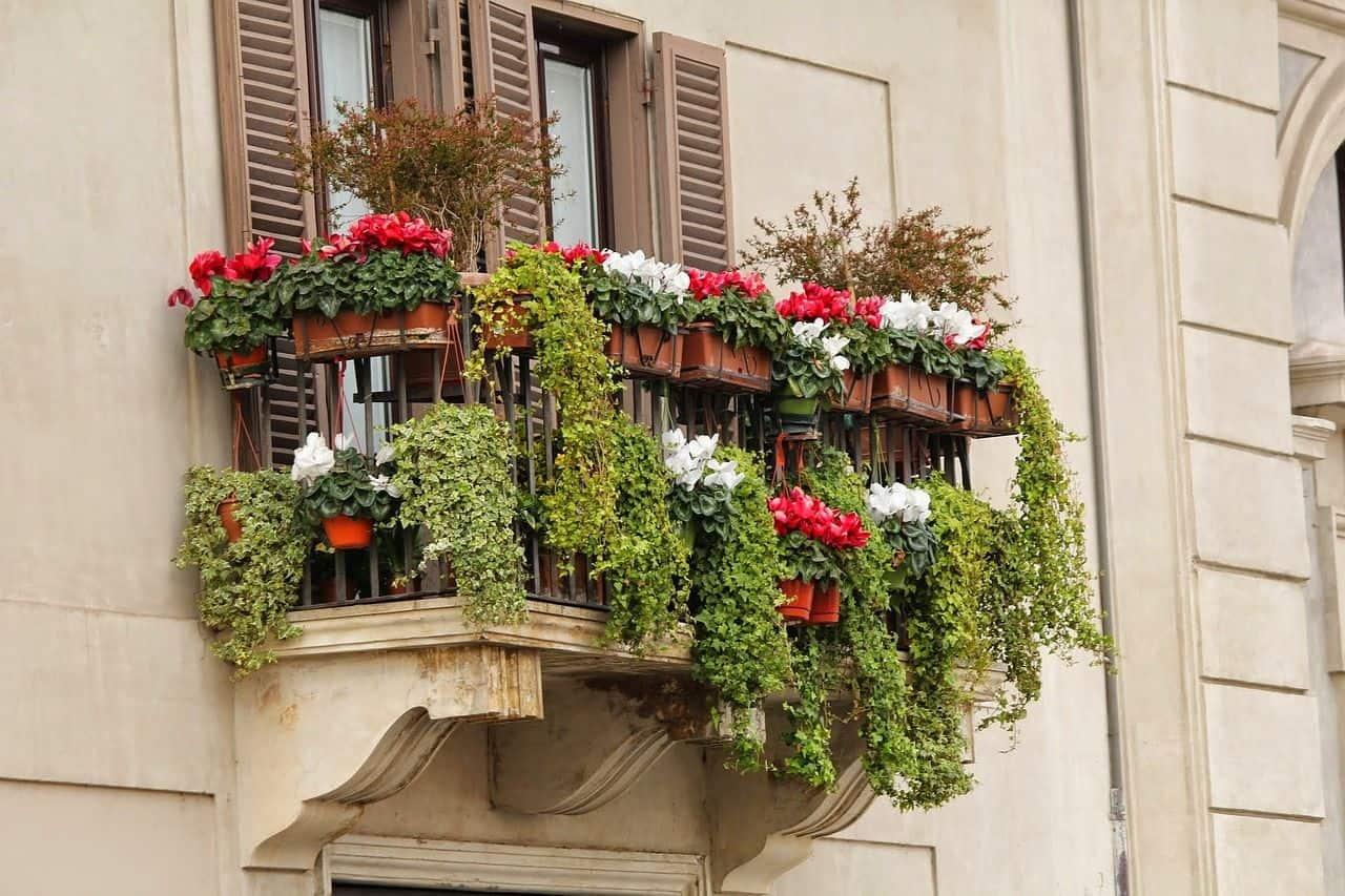 Ein hübscher Balkon-Garten