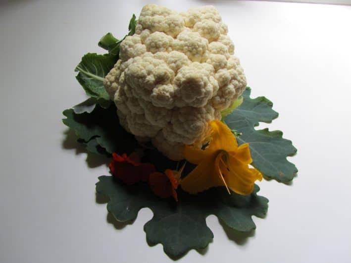 Ein frischer Blumenkohl