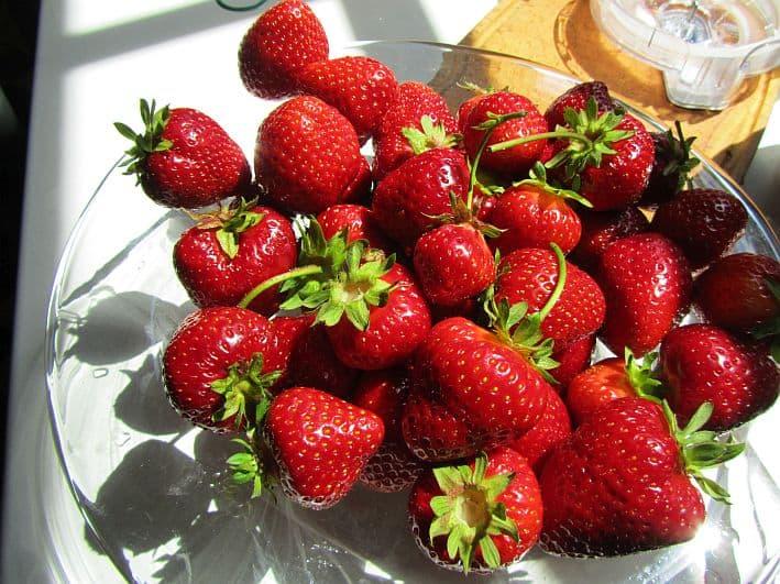 Erdbeeren33