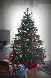 Wissenswertes rund um den Weihnachtsbaum