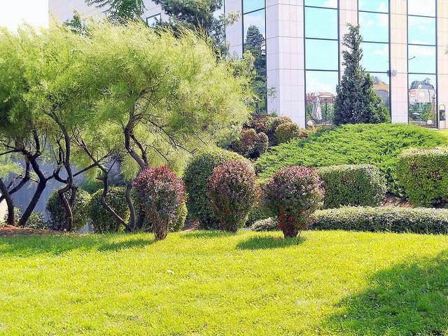 Ein gepflegter Firmengarten