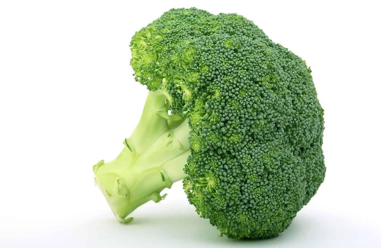 broccoli selbst anbauen nachgeharkt. Black Bedroom Furniture Sets. Home Design Ideas
