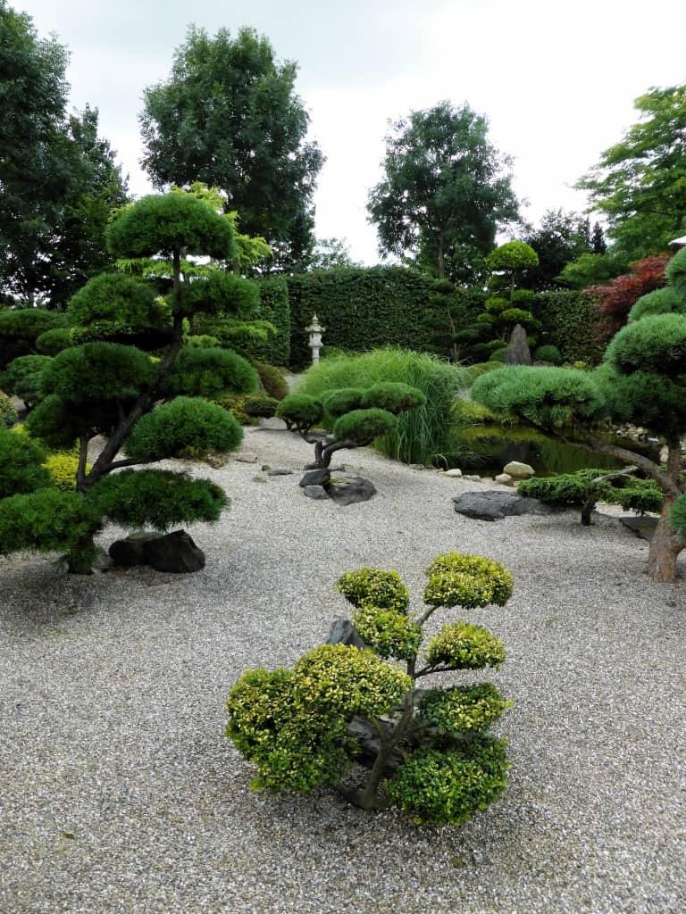 Der japanische garten nachgeharkt for Japanischer garten pflanzen