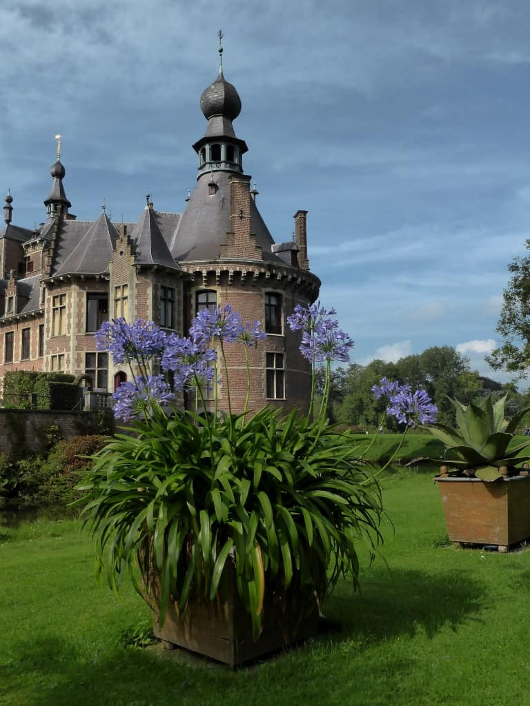 Schloss Ooidonk mit Agapanthus