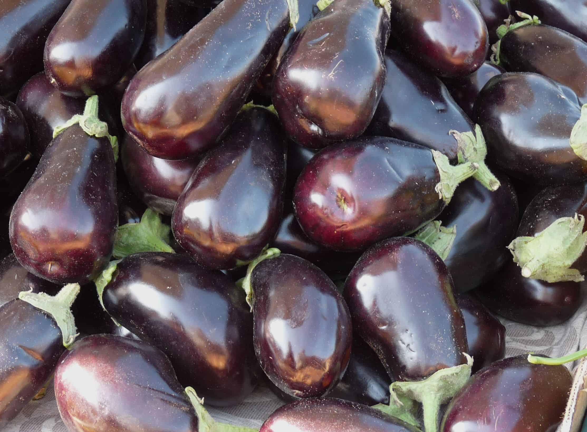 Auberginen – die leckere Eierfrucht