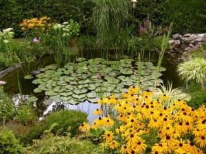 Den Traumgarten anlegen