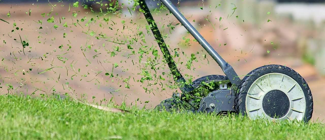 Kaufberatung Rasenmäher – darauf ist zu achten