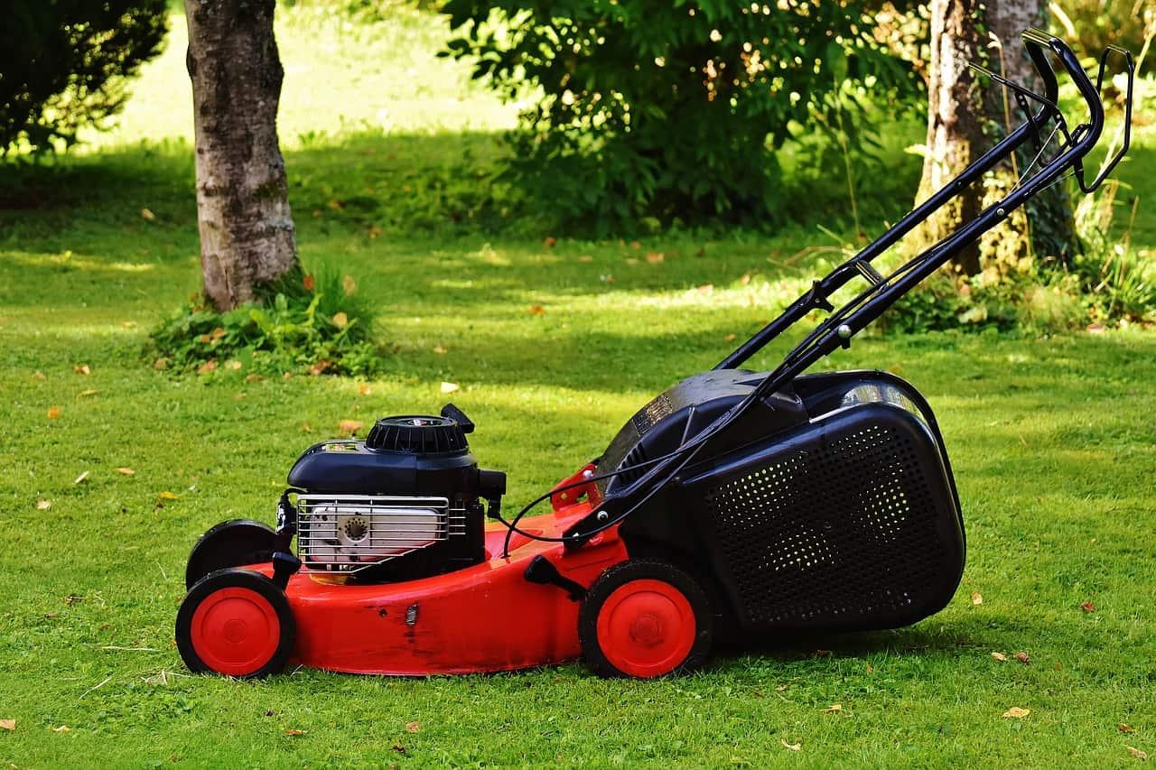 Ein Elektro-Rasenmäher