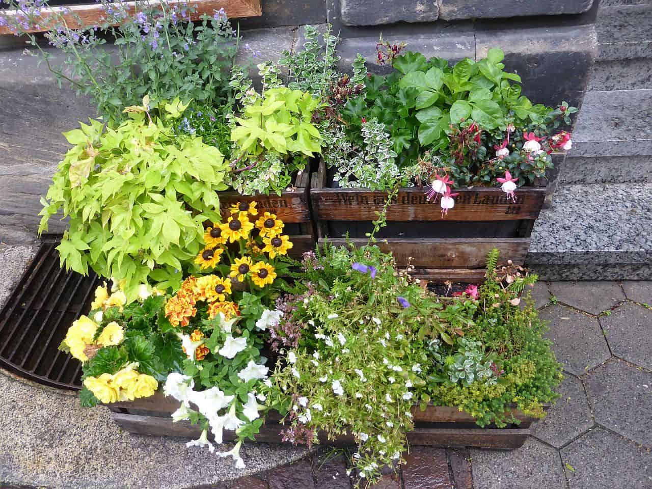 Top Mobiles Gärtnern in Kisten auf wenig Raum - nachgeharkt @KI_41