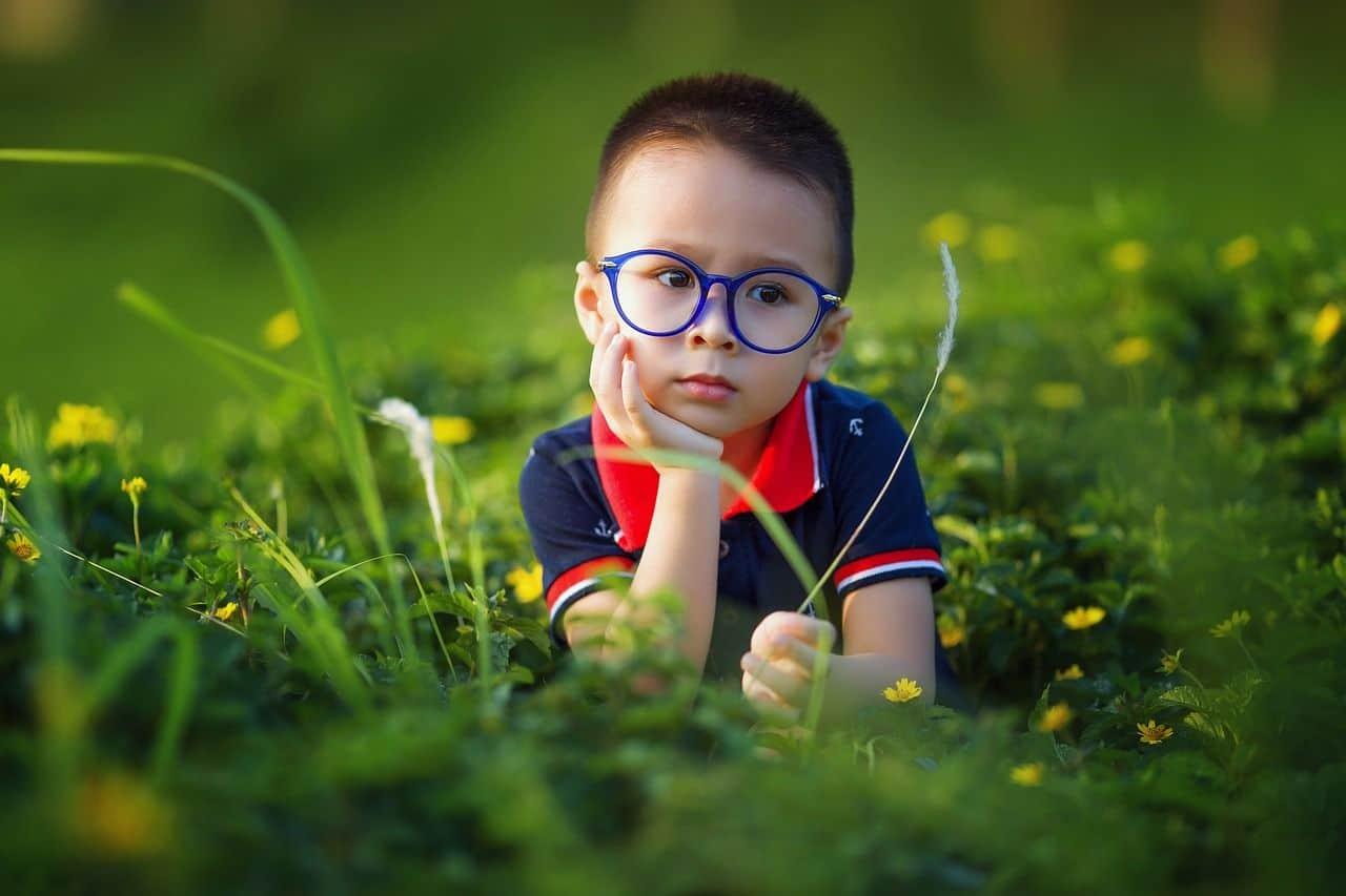Ein kleiner Pflanzenforscher