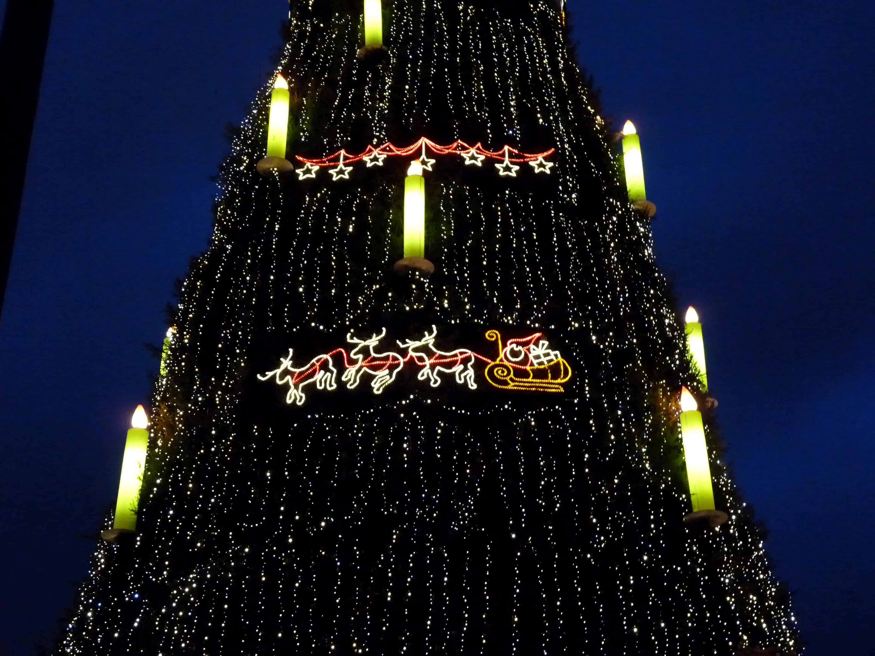 Wo Steht In New York Der Weihnachtsbaum.Der Größte Weihnachtsbaum Der Welt Nachgeharkt