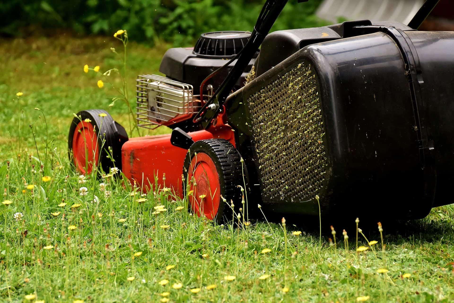 Ein in Betrieb genommener Rasenmäher