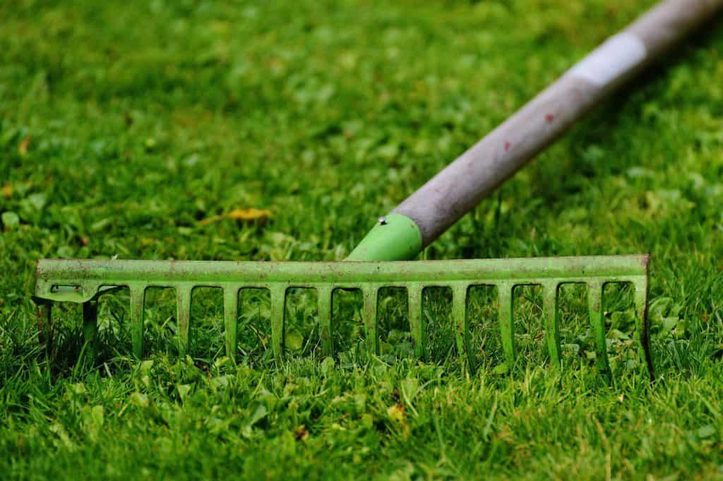 Ein grüner Rechen