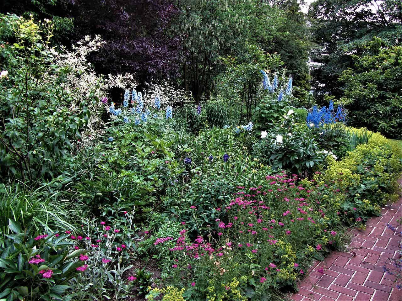 Gartenplanung – Die blaue Rabatte