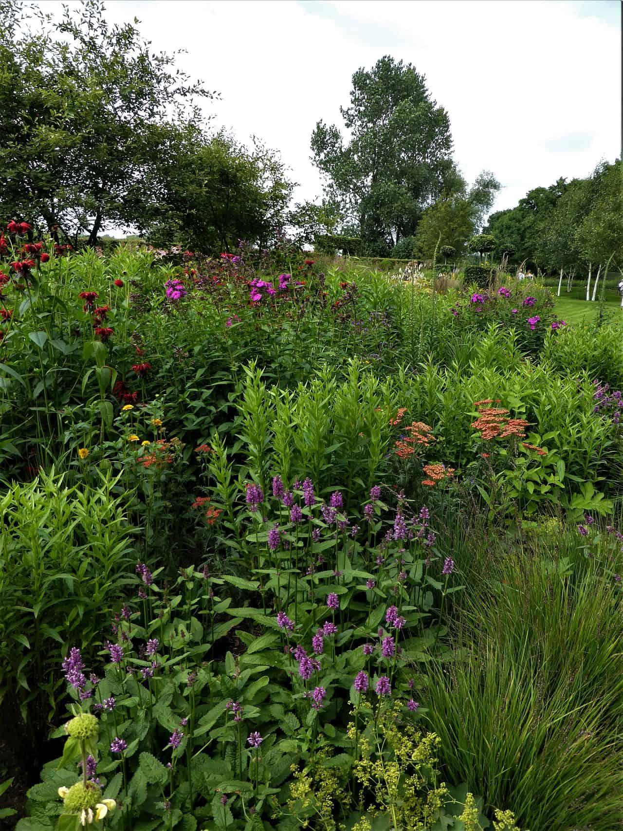 Gartenplanung – Gärtnern nach Farben