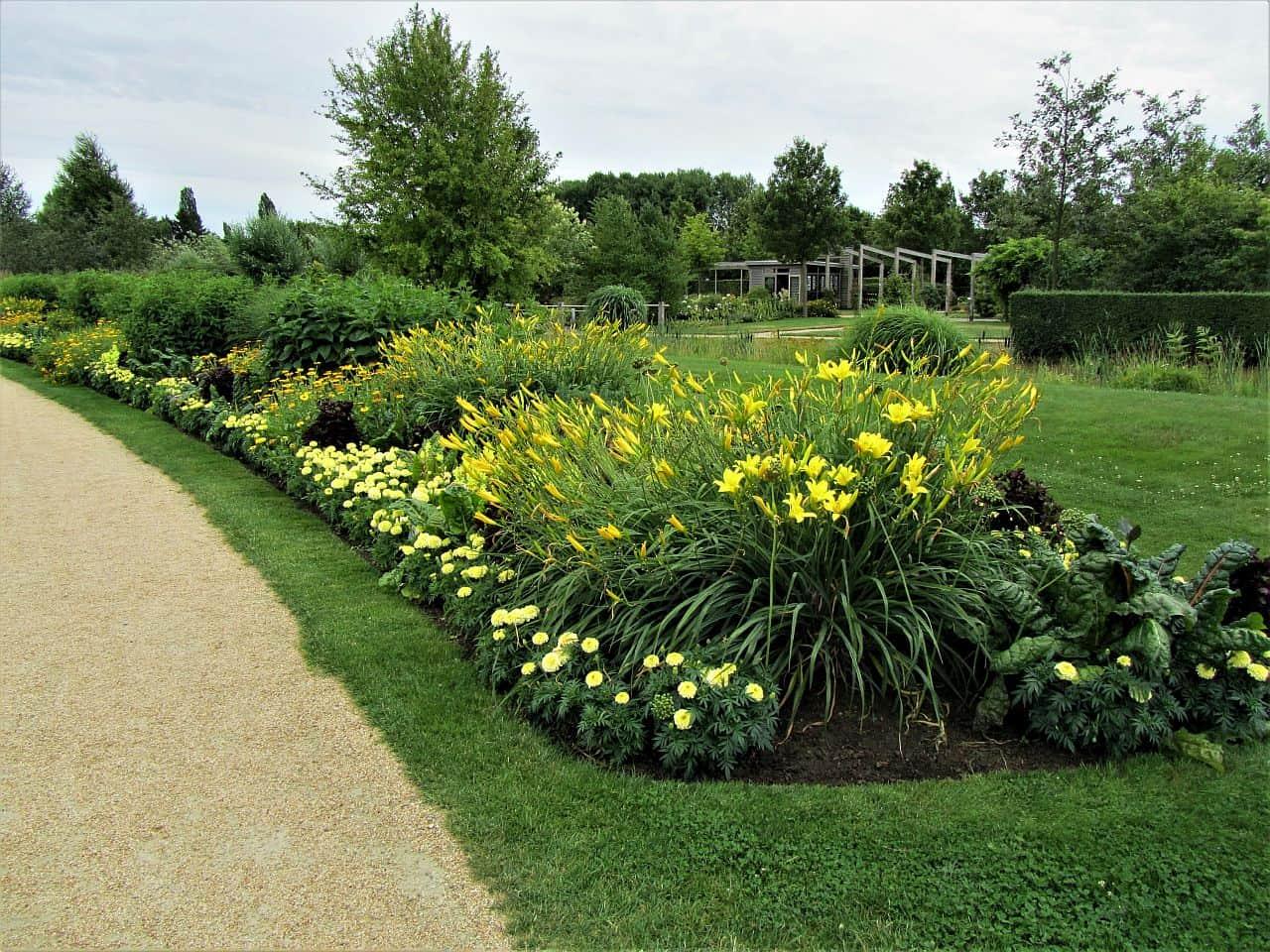 Gartenplanung – gelbe Blumen im Hochsommer