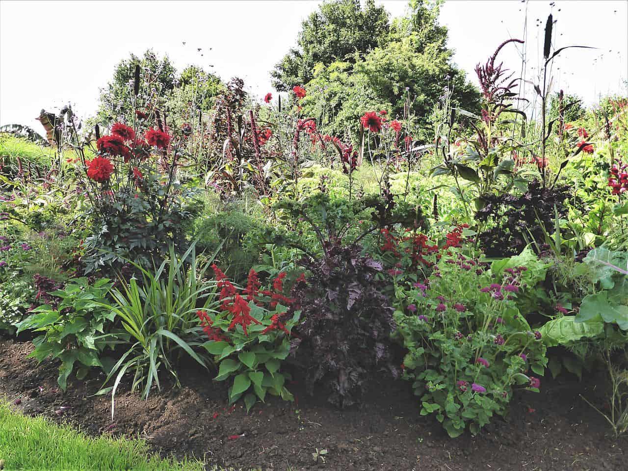 Gartenplanung – Die rote Rabatte