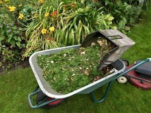 Mulch und Flächenkompostierung – für ein üppiges Pflanzenwachstum
