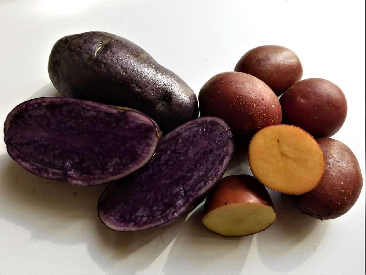 Lila und rote Kartoffeln