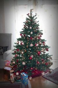 Den perfekten Weihnachtsbaum finden