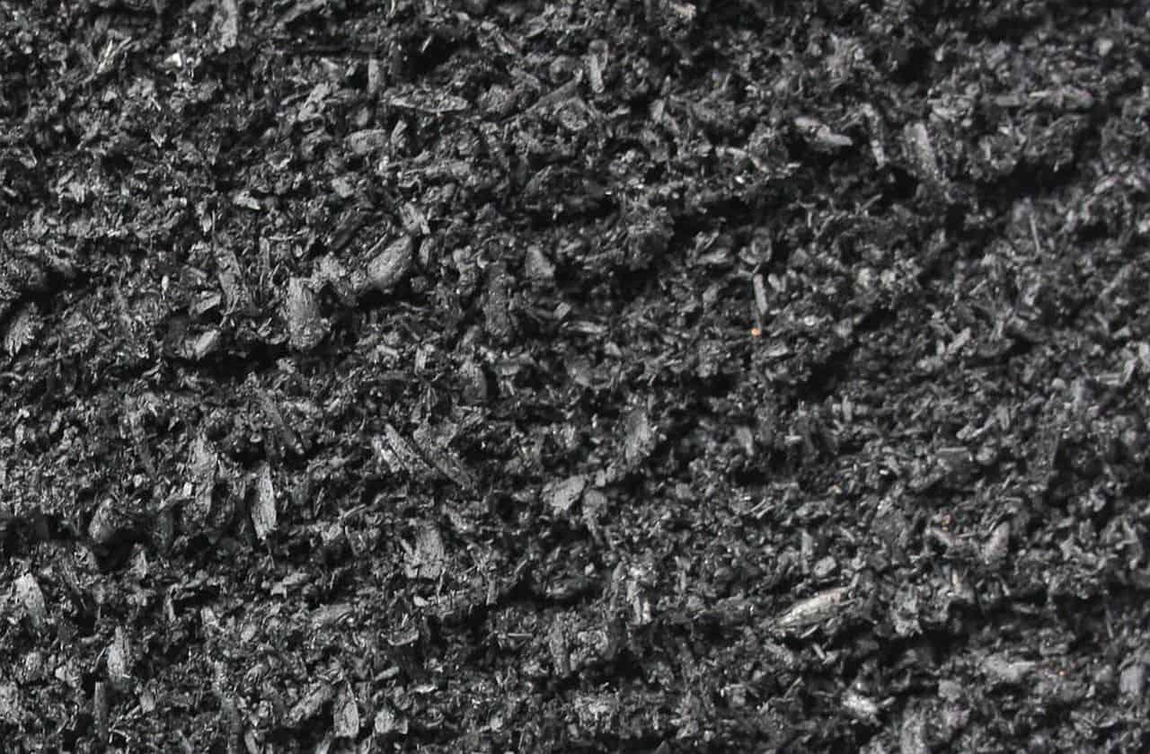 Schwarze Pflanzenkohle