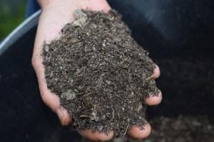 Effektive Mikroorganismen und Bokashi sorgen für ein vitales Bodenleben