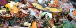 Kompostieren auf dem Balkon: So geht es