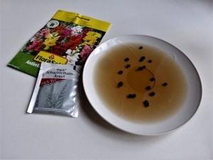 Samen baden – so klappt es mit der schnellen Keimung