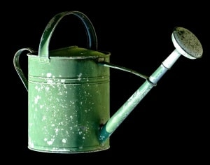 Kompost-Tee – Dünger aus der Gießkanne