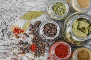 Kräuter haltbar machen – trocknen, einfrieren, verarbeiten