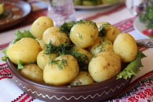 Frühkartoffeln aus dem eigenen Garten