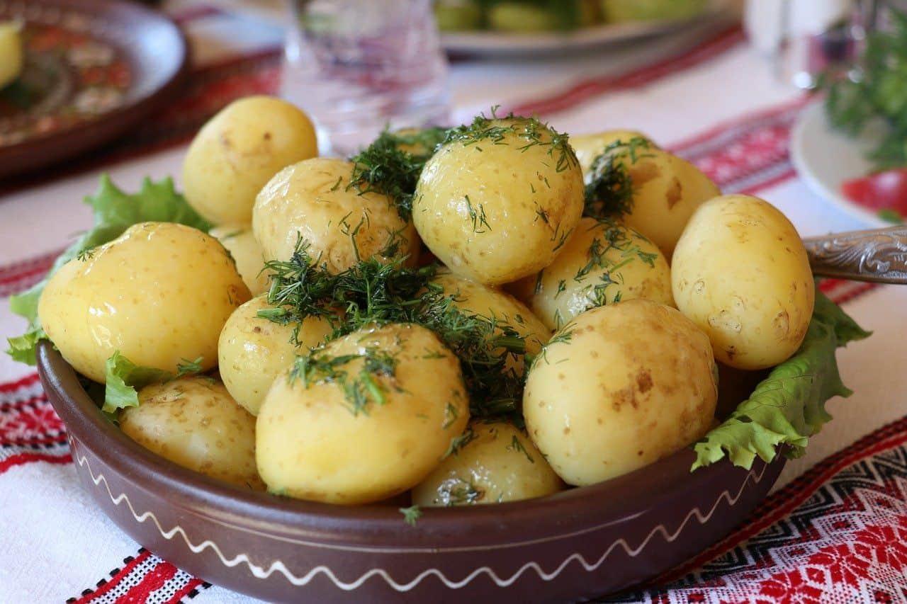 Kartoffeln in einer Schale