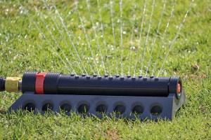 Die wichtigsten Tipps rund um die Rasenbewässerung