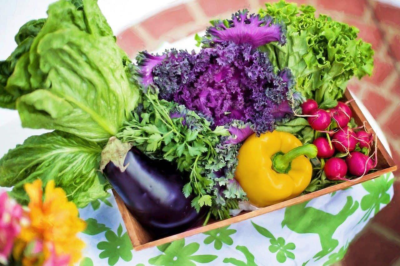 Frisches Gemüse in einer Box