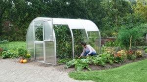 Gewächshaus-Arten und Vorteile für den grünen Daumen