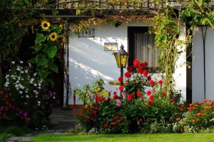 Übernachten im Kleingarten – was ist erlaubt?