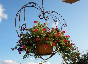 Gestalten mit Blumenampeln