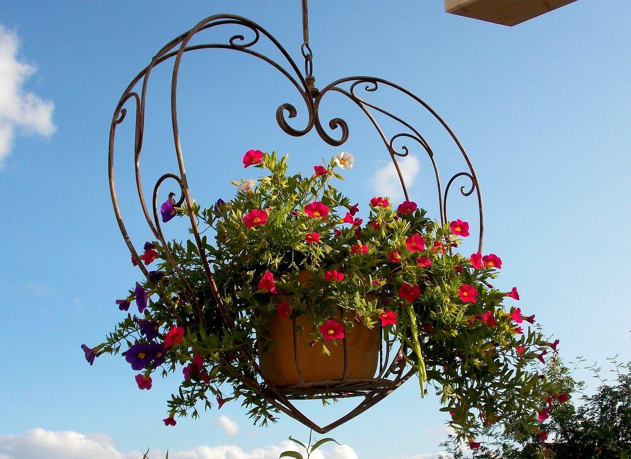 Eine Blumenampel