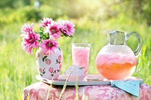 Limonade aus Blüten selbst machen