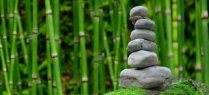 Einen Zen-Garten anlegen